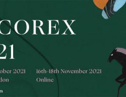 Decorex 2021 logo